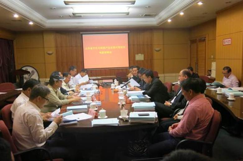 《山东省文化产业和旅游产业发展对策研究》顺利通过评审